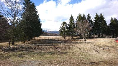 清泉寮ジャージーハット前からの牧場の眺め